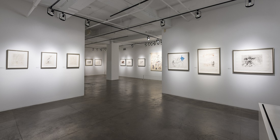 Salvador Dalí - Installation View